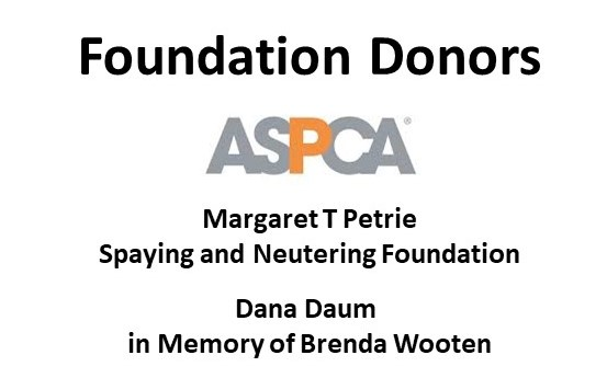 2018 Foundation Donors