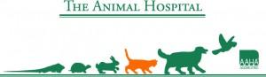 Carrboro Animal Hospital