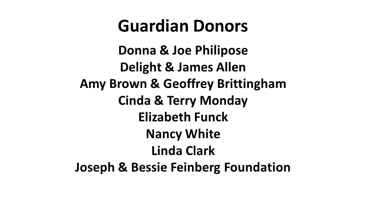 Guardian Donors